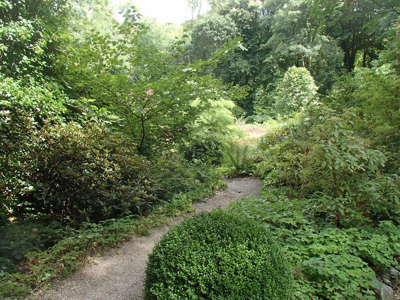 Path to Plas Cadnant valley bottom